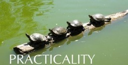 Practicality With The Payroll Solutions Company   Practicality With The Payroll Solutions Company   Scoop.it