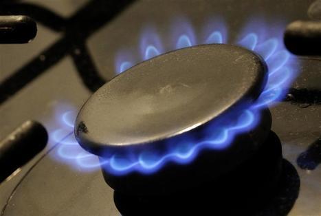 Choix difficiles en vue pour le gouvernement sur les prix du gaz   ECONOMIE ET POLITIQUE   Scoop.it