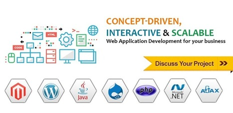 Web Application development | Indies | It Development and Consulting Services | Scoop.it