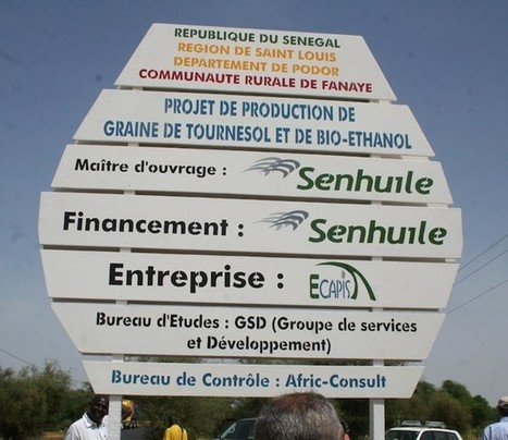 Senhuile réclame 550 millions à la petite commune de Fanaye | Questions de développement ... | Scoop.it