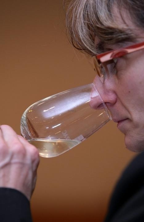 Monbazillac (24) : une fête pour les 80 ans de l'appellation | Agriculture en Dordogne | Scoop.it