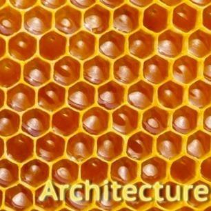 Élements de données : L'essence de l'architecture REST | Anis ... | Agile, Lean, NoSql et mes recherches informatiques | Scoop.it