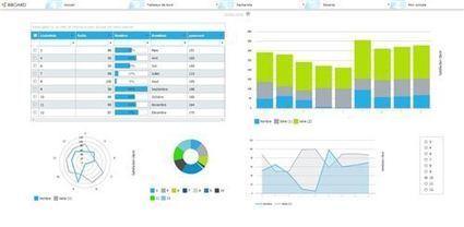 BiBOARD identifié et référencé au niveau mondial par Microsoft BizSpark | Actu de l'écosystème d'Axeleo | Scoop.it