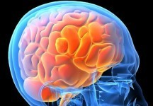 Study: Unconscious Mind Plays a Role in Learning | Education News | Tech, Social Media and Students 82608 | Scoop.it