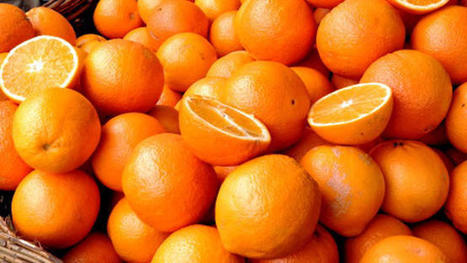 Man Charged With Theft of Four Million Pounds of Citrus | Strange days indeed... | Scoop.it