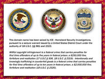 Feds Seize 130+ Domain Names in Mass Crackdown | From the Sofa to #SOPA | Scoop.it