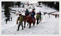 About Kufri in Himachal Pradesh   himachaltourpackages.in   Himachal Tourism Guide   Scoop.it