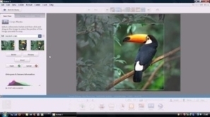 Free Download Picasa at Softmozer.com   Software   Scoop.it
