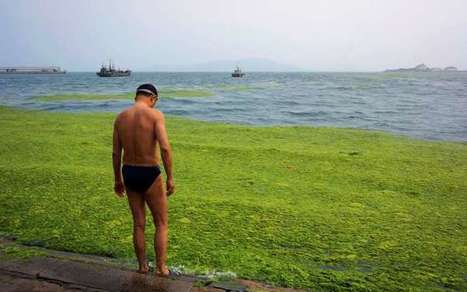 Polluted waters of China | Water issues in China | Scoop.it