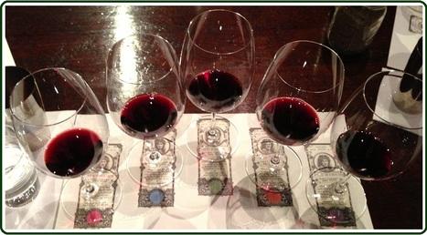 Sonoma Wine Tour Limos, Hire Sonoma Limo for Wine Tour | Bay Area Limo Wine Tour Service | Scoop.it