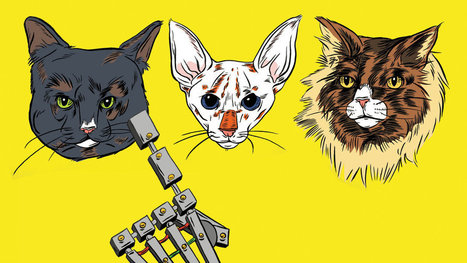 Hey, Robot: Which Cat Is Cuter? | singularity+ | Scoop.it