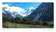 New Zealand Romance | International Tour & Holiday Packages from Delhi,  India. Book World Honeymoon Tour Packages at Pearlstourism.net | Scoop.it