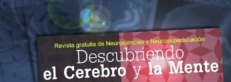 Revista on-line gratuita de Neurociencias | EDUCACIÓN en Puerto TIC | Scoop.it