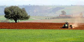 Plan Maroc Vert : 40 milliards de DH d'investissements engagés à fin 2012 | L'agriculture marocaine | Scoop.it
