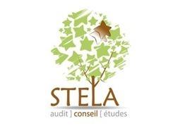 STELA conseil - Bureau d'études spécialisé dans l'Attractivité des Communes | Actu de l'Aménagement Urbain | Scoop.it