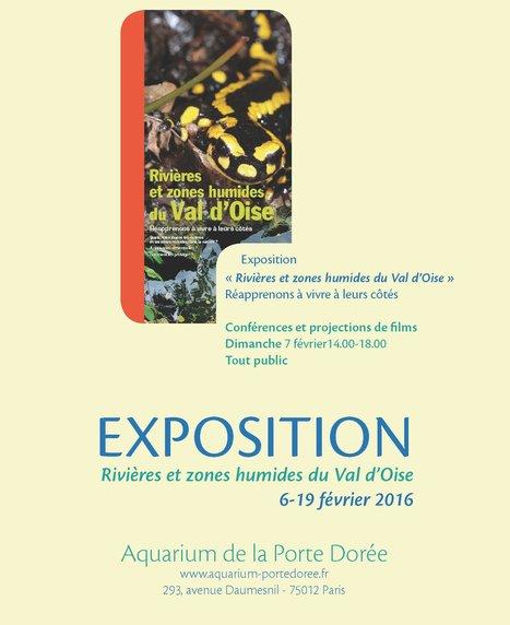 [Expositions] La Journée mondiale des zones humides investit le Palais de la Porte Dorée   Variétés entomologiques   Scoop.it