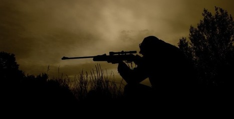 DARPA's self-guiding sniper bullet can find its own target | leapmind | Scoop.it