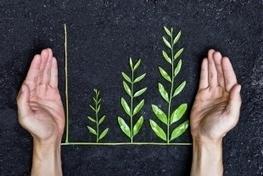 9 Ways Sustainability Drives Profit : Greentech Media | CSR Solutions | Scoop.it