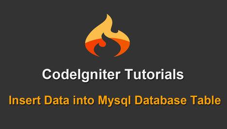 Codeigniter Tutorials - Insert Data into Mysql Database Table | Povonte Blog | Scoop.it