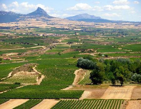 Top 10 Wine Destinations of 2013 | Wine Culture | Scoop.it