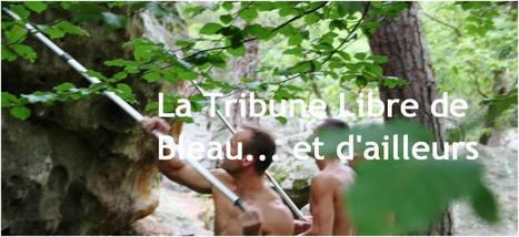 la tribune libre des sites de Fontainebleau | Adventure Travel destinations | Scoop.it