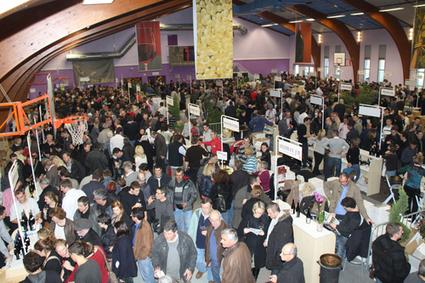Ampuis – 85e marché aux vins « Tribune de Vienne | oenologie en pays viennois | Scoop.it