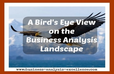 A Bird's Eye View on the Business Analysis Landscape | Business Analysis | Scoop.it