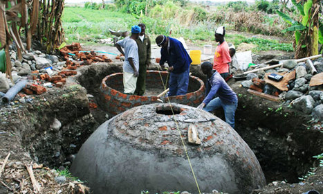 Biogas projects lights up 9000 households | Biogas | Scoop.it