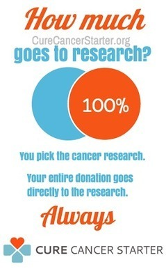 Sustainable Cancer Charities Are Stupid, Why CureCancerStarter.org Has A Term Limit   Curation Revolution   Scoop.it