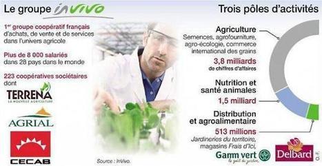In Vivo. Le géant de l'agriculture se développe tous azimuts | Chimie verte et agroécologie | Scoop.it