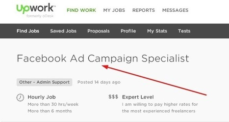 Become a Facebook Ad Campaign Specialist | Education, Health, B2B, DIY Guide, Solar Energy, Reducing Energy Bills, Wholesale, Retail, Real Estate | Scoop.it