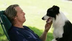 Pet therapy efficace per il cancro: ecco cos'è   Dieta e attività fisica   Scoop.it