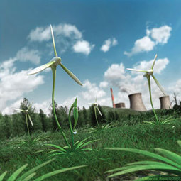 Renewables And The Impact On Environment | EEP | EnviroPets | Scoop.it