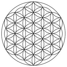 Shifting into Purer Consciousness: Endorsements for Shifting into Purer Consciousness | BRAIN & CONSCIOUSNESS | Scoop.it