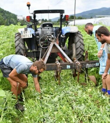 Maraîchage bio et fertilisation des sols au lycée du Plixbourg à Wintzenheim (68)   AC Agriculture de Conservation   Scoop.it
