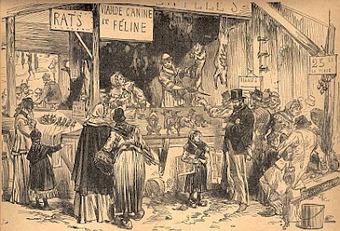 Au menu en 1870 : chats, chiens, ... et éléphants | Ca m'interpelle... | Scoop.it