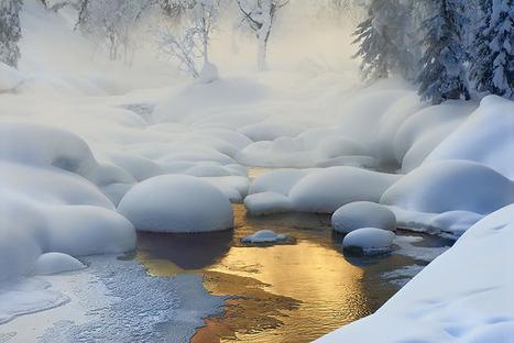 Siberia. -37°C  - Dmitry Dubikovskiy | LOVELY | Scoop.it