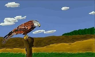 Dessiner ou peindre en ligne avec FlockDraw | E-apprentissage | Scoop.it