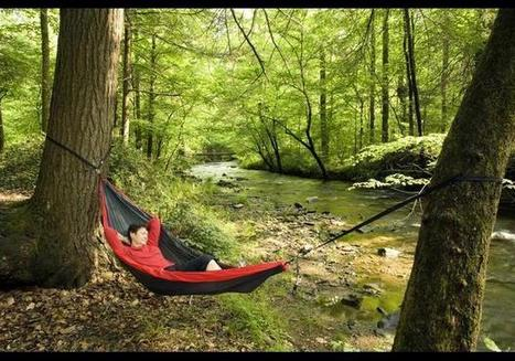 Brevard, NC - In Photos: The 25 Best Places To Retire in 2014 | Live in Brevard | Scoop.it