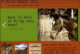 Will Social Media help A Horse Named Joey? | Virtual Assistant Social Media Content Curator | Scoop.it