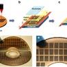 graphene superconductors