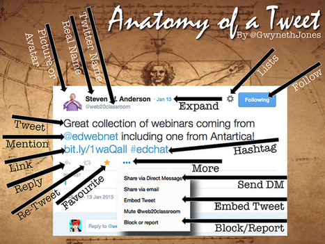 Da_Vinci_Tweet_Anatomy | Going Digital | Scoop.it