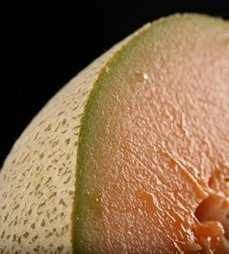 Cantaloupe vs. al-Qaeda: What's More Dangerous? | Food Poison Journal | Food issues | Scoop.it
