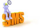 Bulk SMS Service Providers Bangalore | Premium Bulk SMS Gateway | Web Design Company,E commerce Development, SEO Services | Scoop.it