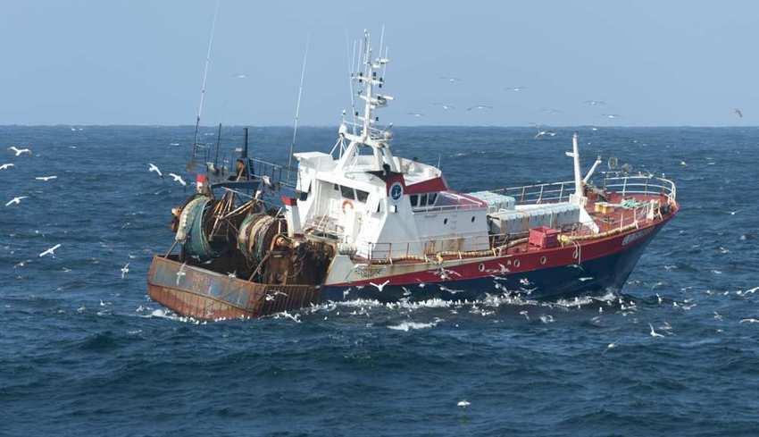 Intermarché arrête la pêche des espèces vivant dans les hauts fonds