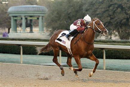 Tapiture pulls away to win Southwest Stakes - The San Luis Obispo Tribune | Sports News | Scoop.it