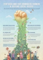 Infographic: Stop Seed Laws That Criminalise Farmers & Defend Local Seeds! - Cornucopia Institute | sustainablity | Scoop.it