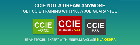 Best institute in Delhi for CCIE, Networking, Hacking and Security Courses | NET HUB | Scoop.it