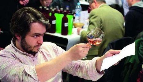 Les meilleurs vins de vignerons indépendants - L'Express | Oenotourisme en Entre-deux-Mers | Scoop.it