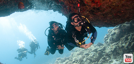 Professional Association of Diving Instructors | PADI | DiverSync | Scoop.it